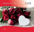 Broschüre Heiraten in Calw