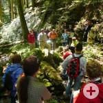 Wandergruppe_in_Wald
