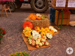 Kürbisse auf dem Wochenmarkt