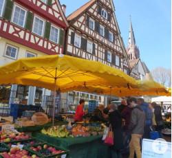 Wochenmarkt Calw